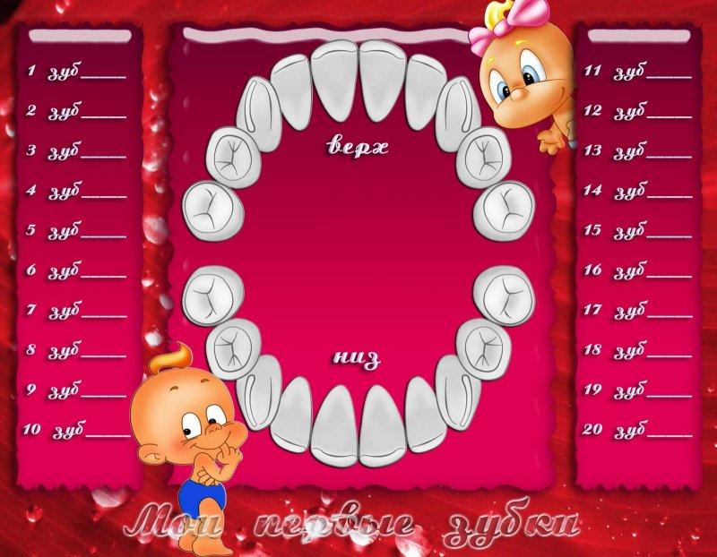 нашей странице картинка для отмечания зубов врачу телефону