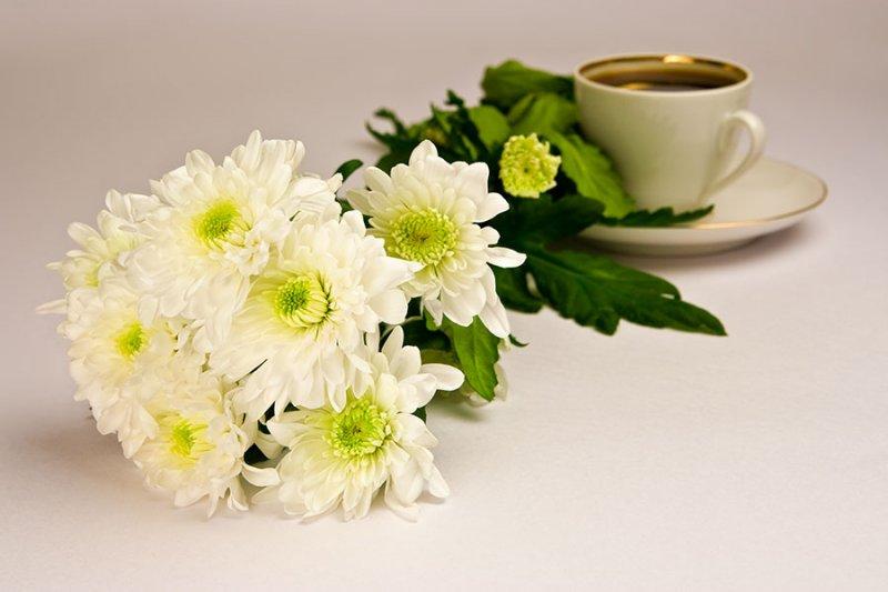 Картинки с четвергом доброго утра анимация цветы екатеринбурге