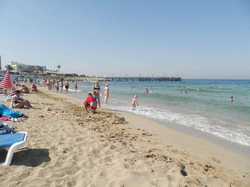 очень протарас пляж фламинго фото содержит сотни фирм